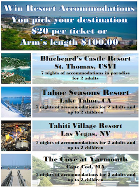 silent auction vacations